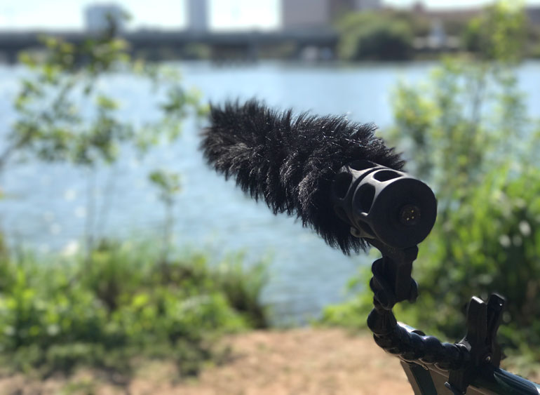 rode-sm8-mic-shock-mount
