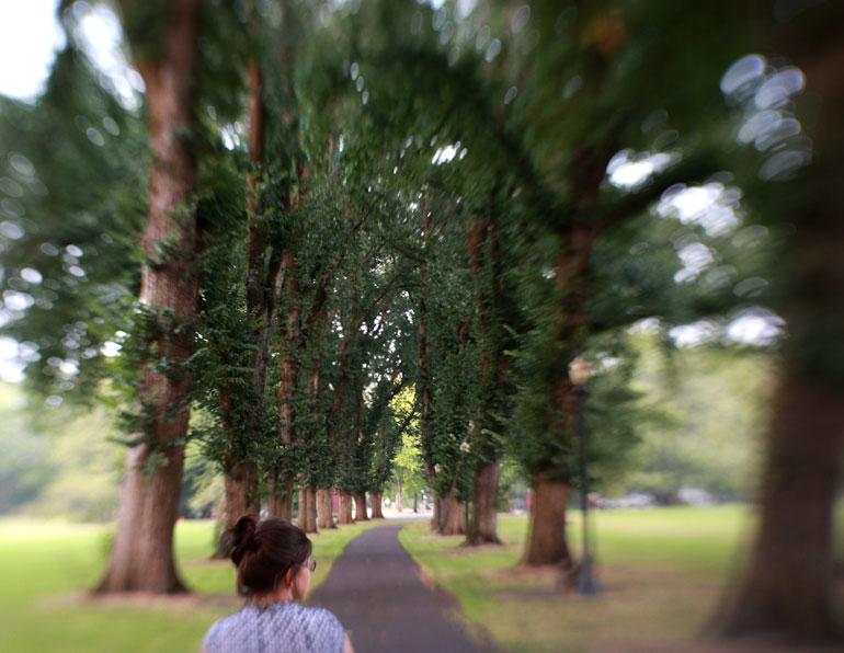 oregon state university path