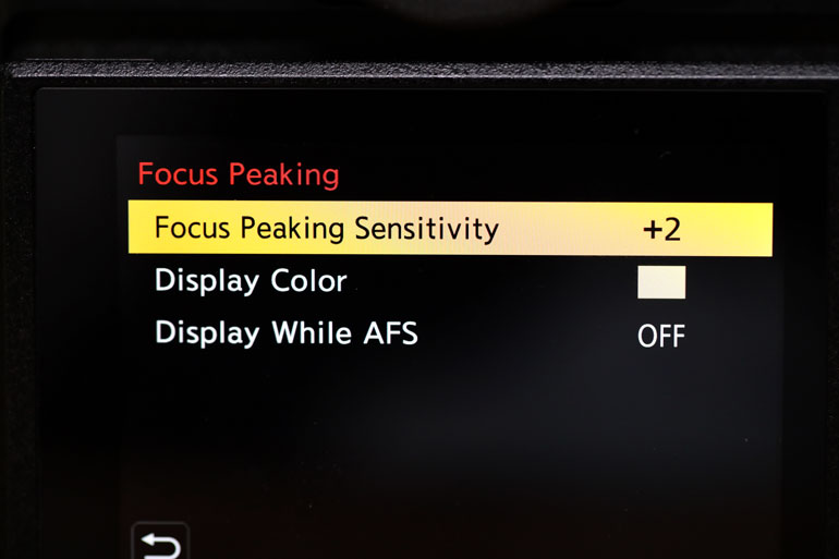 panasonic-s1-mirrorless-camera-focus-peaking-sensitivity